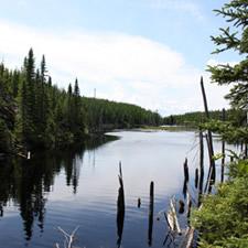 Protect Kipawa Lakes System