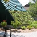 Green Building Standards