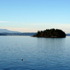 Protect Saanich Inlet